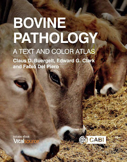 Bovine Pathology A Text and Color Atlas