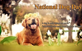 National Dog day 2019, Wishes images, Cute Dog, Cute Puppy, History