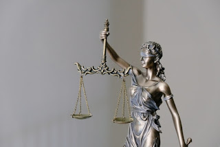 judiciário administrativo direito servidor agente político