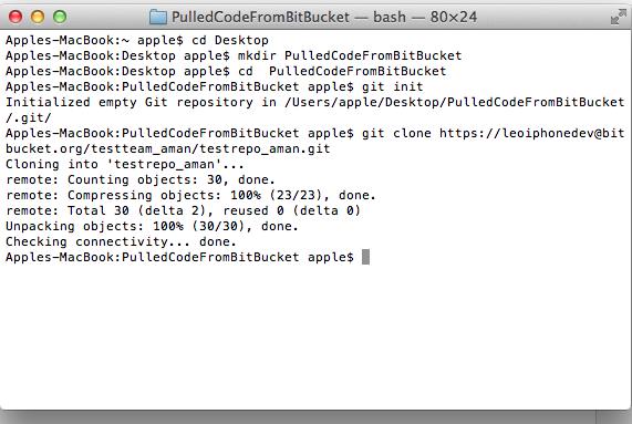Bitbucket Code Pull3