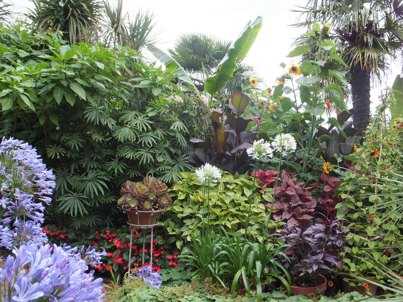 Alternative Eden: Will Giles Exotic Garden Norwich
