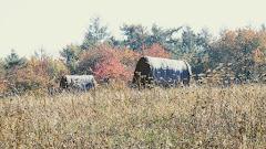 Jesienne pole ze snopkiem siana w Siadle Górnym