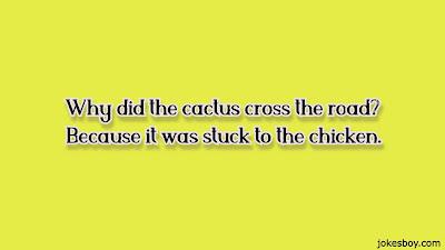 cactus puns for kids