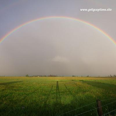 Rainbow Captions,Instagram Rainbow Captions,Rainbow Captions For Instagram
