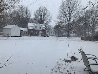 Snowy Back Yard in February 2021