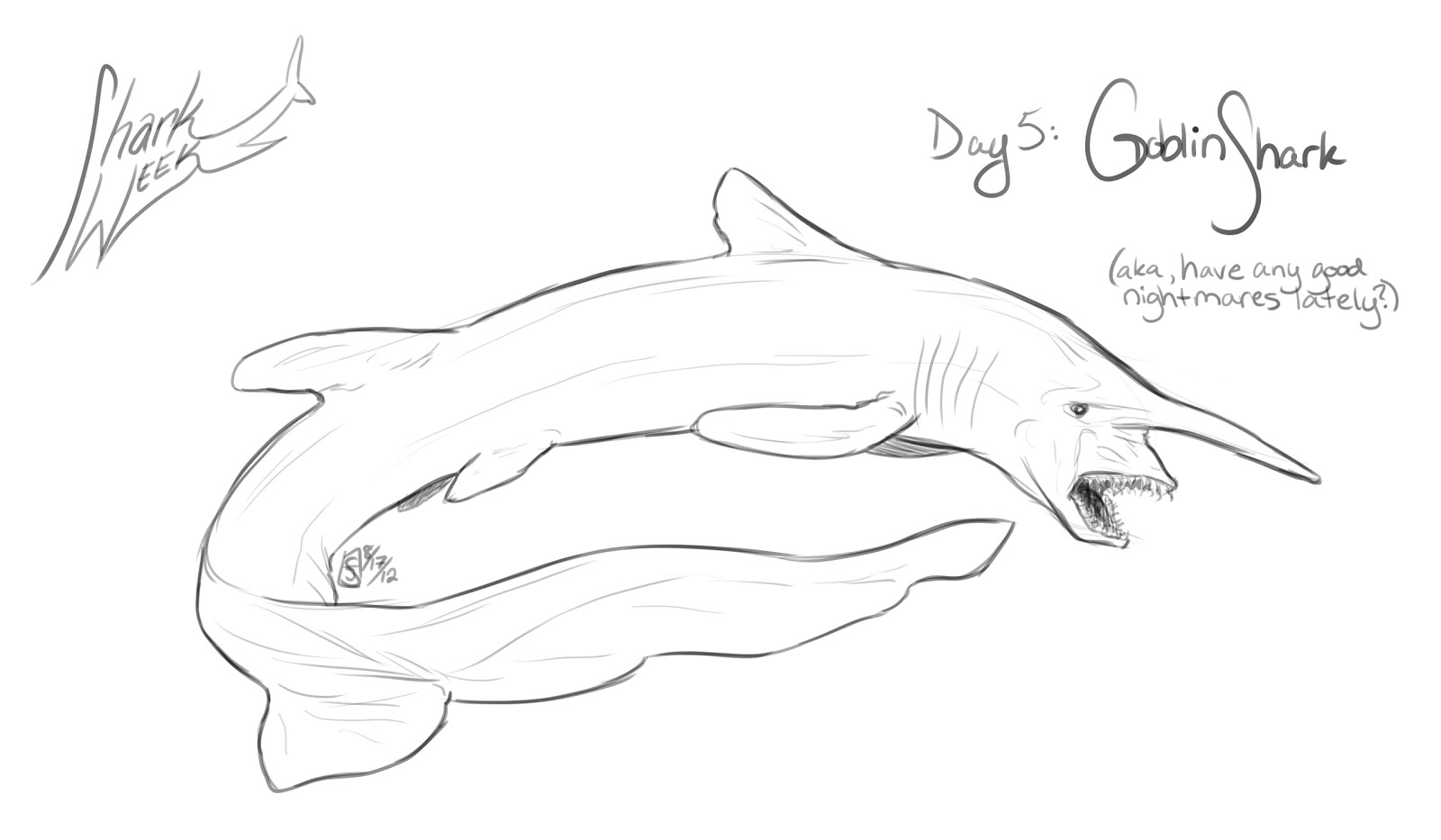 sea of sharks colouring pages