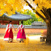 5 trải nghiệm không thể bỏ lỡ khi đi du lịch Hàn Quốc mùa thu