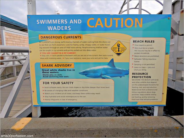 Letrero de Advertencia sobre los Tiburones en MacMillan Wharf de Provincetown