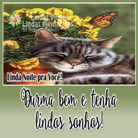Durma bem e tenha  lindos sonhos!  Boa Noite!