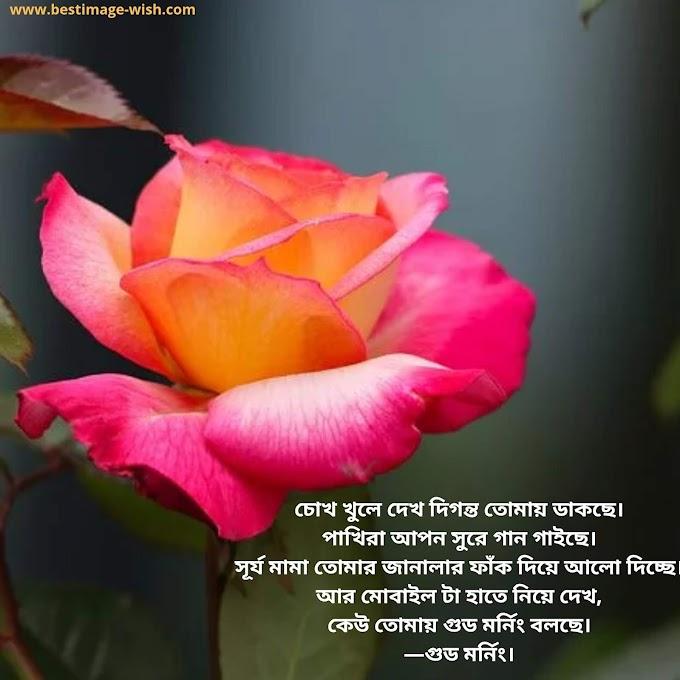 শুভ সকাল এসএমএস, গুড মর্নিং এসএমএস, কবিতা,suvo sokal sms, বাংলা শুভ সকাল শুভেচ্ছা,good morning sms in bengali