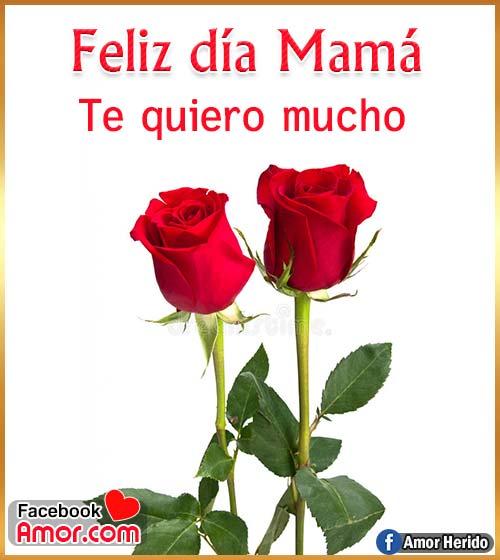 rosas roja para mamá