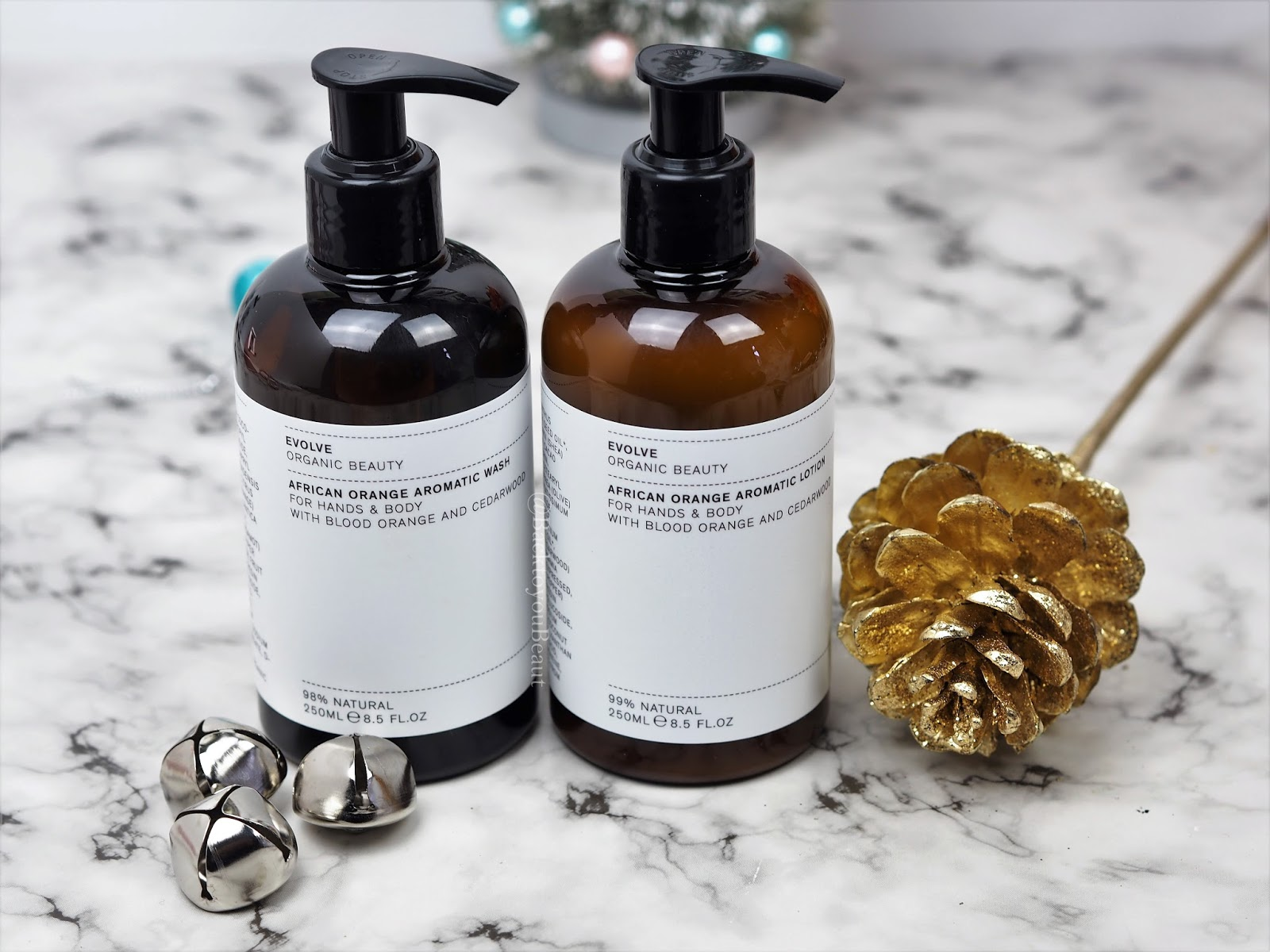Evolve Organic Beauty African Orange Aromatic Hand & Body Wash and Hand & Body Lotion