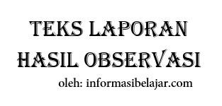Struktur Teks Laporan Hasil Observasi