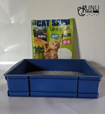 Jenis Pasir Gumpal Kucing yang Bagus