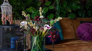 Arreglos con dalias y otras plantas bulbosas de flores estivales