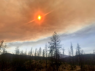 fire disaster response California