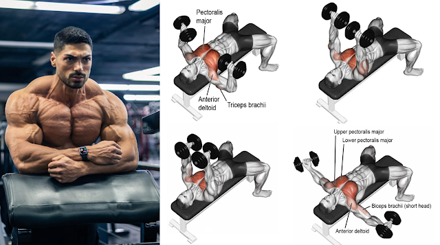 4 Exercises to Build Massive Chest Muscle With Dumbbells