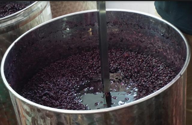 יקב יין