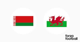 Беларусь – Уэльс где СМОТРЕТЬ ОНЛАЙН БЕСПЛАТНО 5 СЕНТЯБРЯ 2021 (ПРЯМАЯ ТРАНСЛЯЦИЯ) в 16:00 МСК.