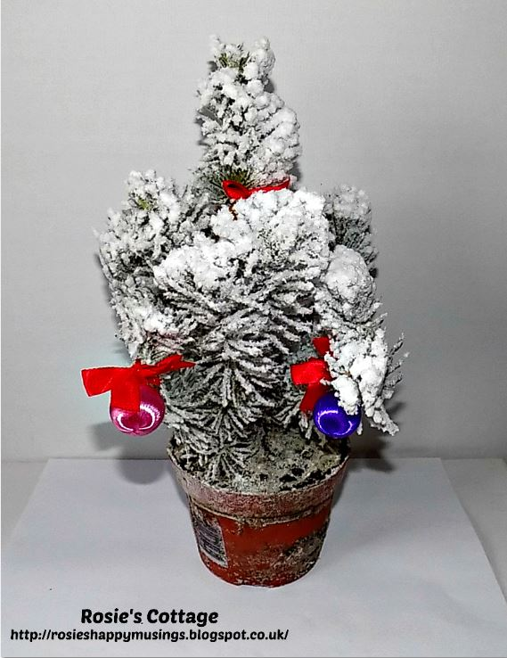 Katies Christmas Tree