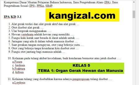 Soal UAS / PAT / UKK Kelas 5 Tema 1 Kurikulum 2013 Revisi 2019/2020 kangizal.com