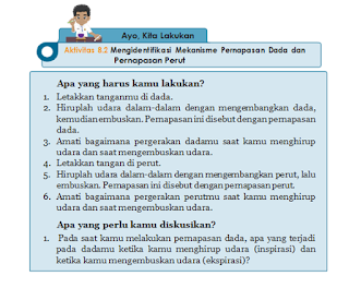 Aktivitas 8.2 Mengidentifikasi Mekanisme Pernapasan Dada dan Pernapasan Perut, IPA Kelas 8
