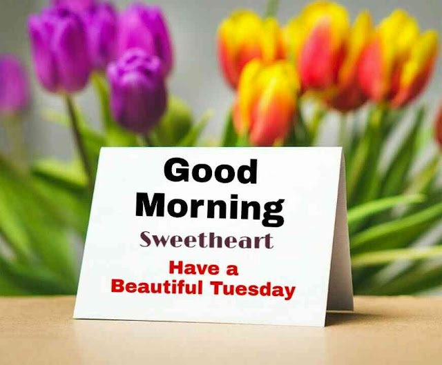 Good Morning Tuesday - Good morning tuesday blessings