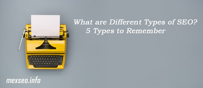 What are Different Types of SEO? 5 Types to Remember