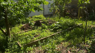 Diarmuid Gavin garden