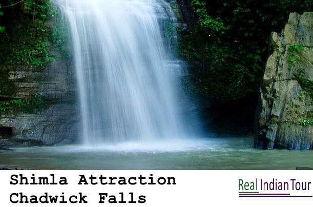 Shimla Attraction - Chadwick Falls
