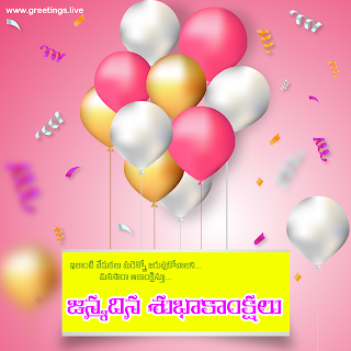 """janmadina subhakankshalu"" happy birthday wishes in Telugu language"