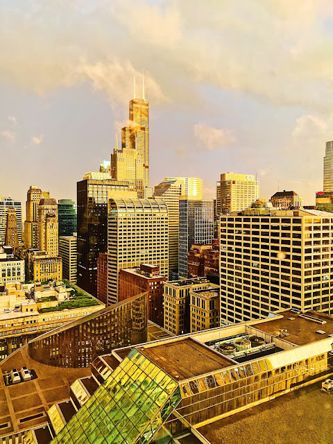 Downtown Chicago Golden Hour Skyline 2020
