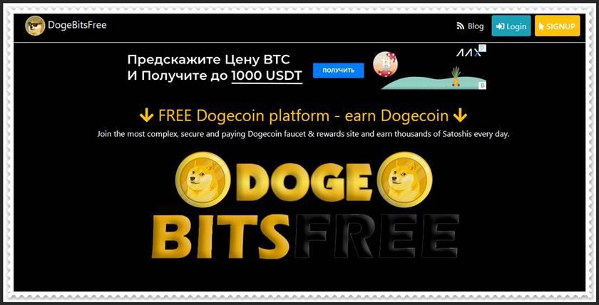 Мошеннический сайт doge-bitsfree.net – Отзывы, развод, платит или лохотрон? Мошенники