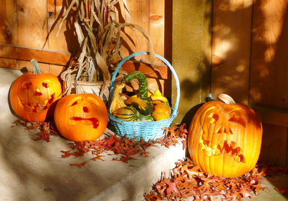 decorations, jack o' lantern, pumpkin, corn stalks, fall, autumn, gourds