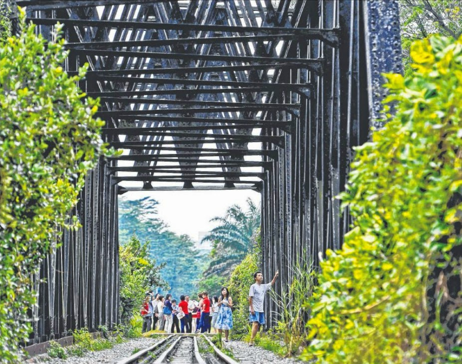 IDEAS WANTED: The Rail Corridor in Bukit Timah