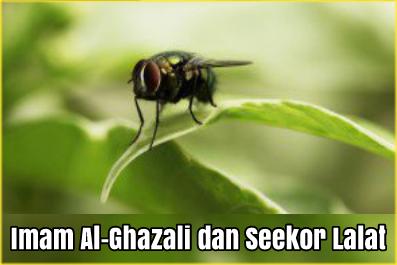 Imam Al-Ghazali dan Seekor Lalat