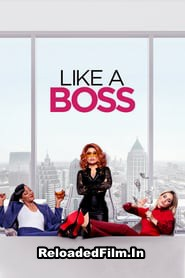 Like a Boss (2020) Full Movie Download in Hindi