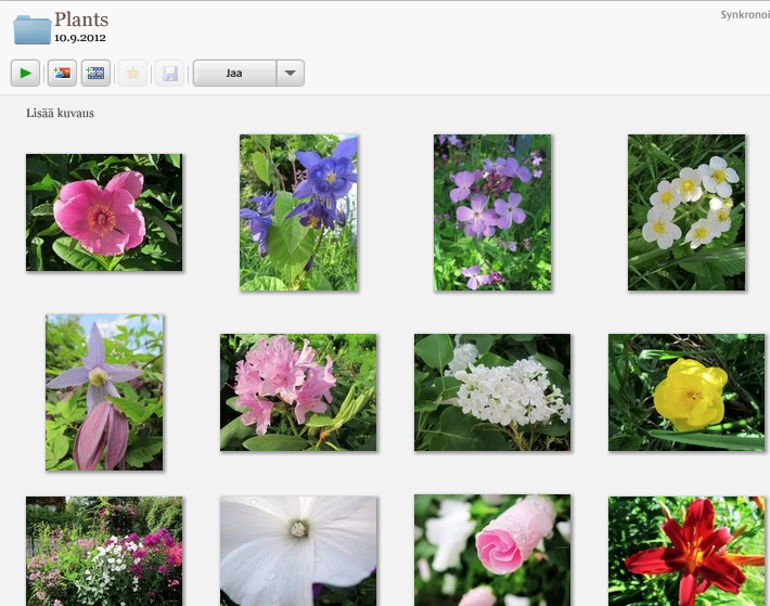 GooglePlus Helper: Google+ Photos Auto Backup now in Picasa
