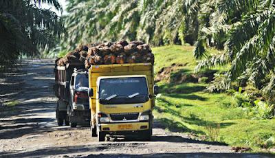 Perusahaan Jasa Transportasi CPO Pekanbaru