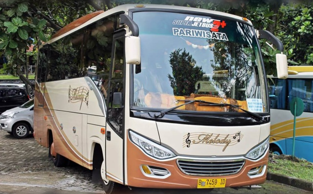 Medium Bus Jetbus 2+