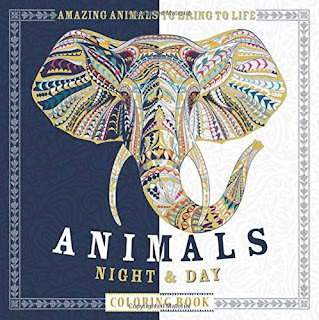 Animals Night & Day Coloring Book
