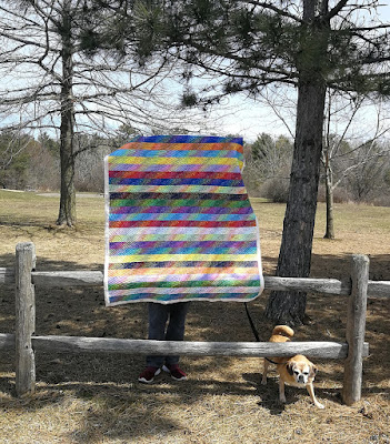 quilt and dog