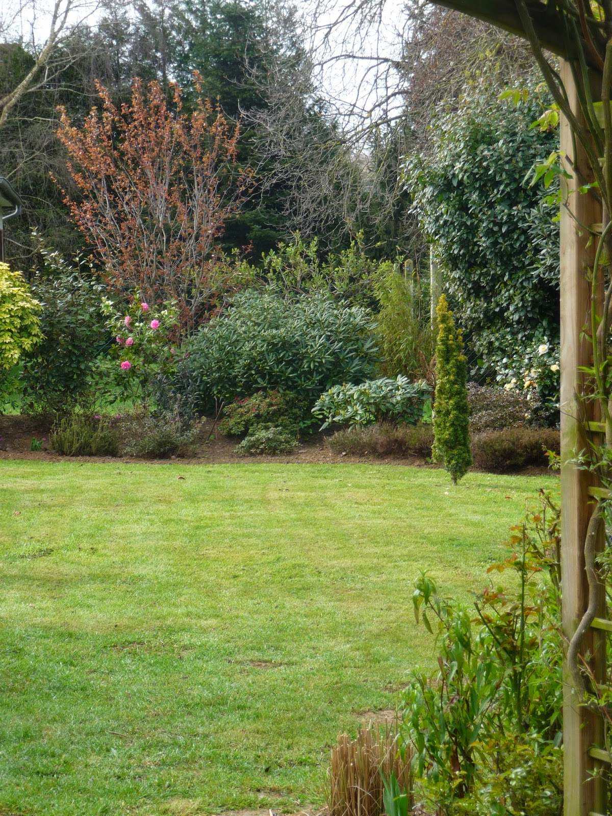 ma terre de bruy re le jardin reprend doucement vie. Black Bedroom Furniture Sets. Home Design Ideas