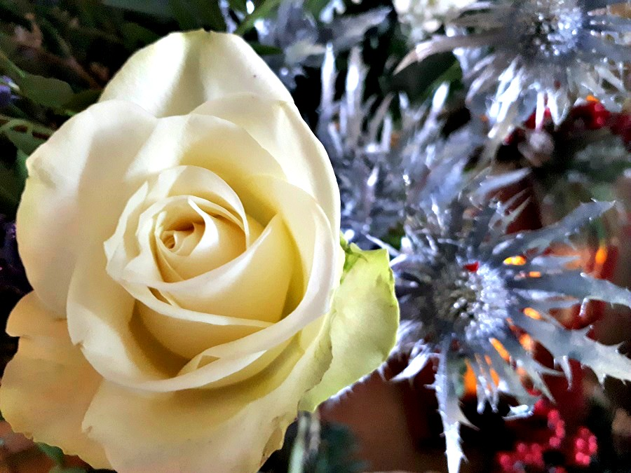 Christmas Roses, Prestige Flowers, Christmas Bouquet, The Style Guide Blog