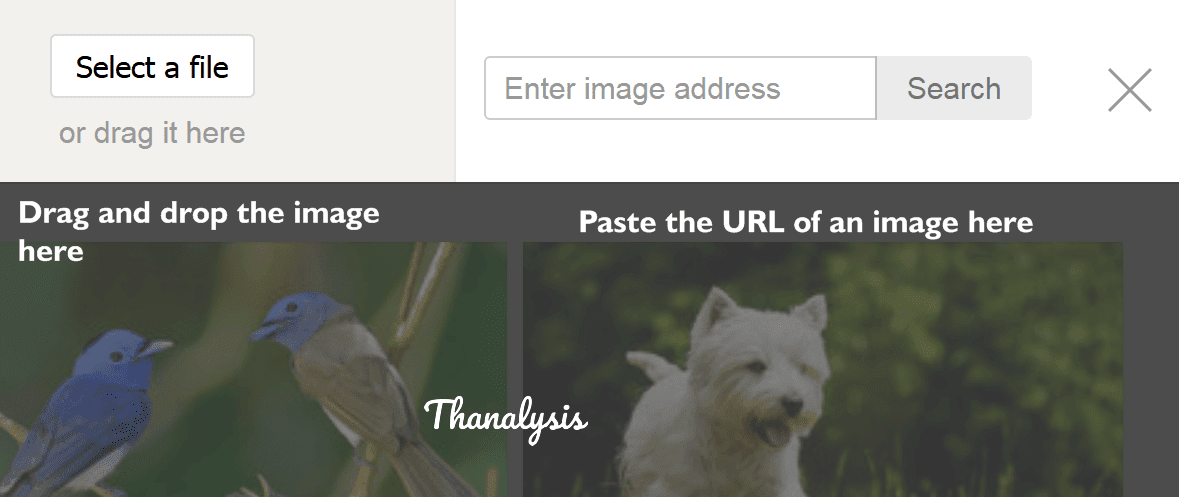 Paste the Image URL or upload the image on Yandex Image Search