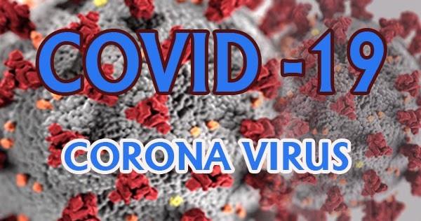 Makalah Tentang Virus Corona Covid 19 Artikel Pendidikan
