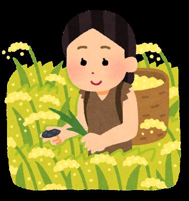 稲作のイラスト(女性)