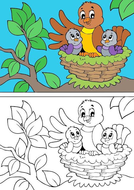 dibujo pajartos en su nido colorear