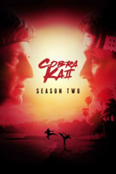 Cobra Kai 2ª Temporada Torrent &#8211; WEBRip 720p/1080p Legendado<
