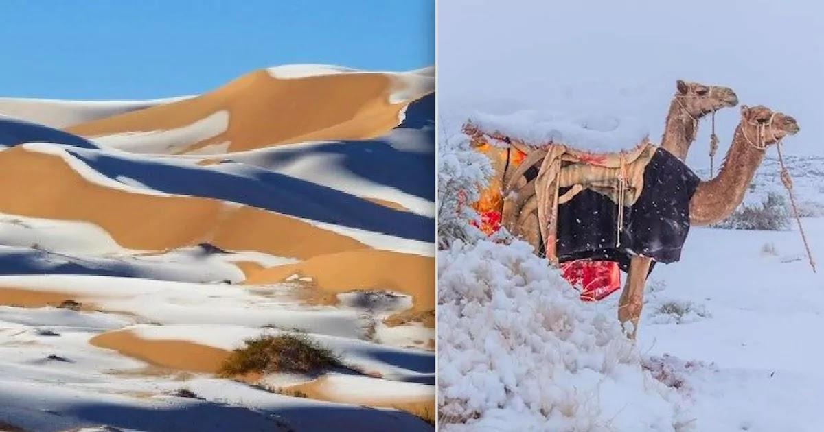 Snow Falls In Saudi Arabia, Algeria, Lebanon, Iran And Syria As Temperatures Drop Below Zero